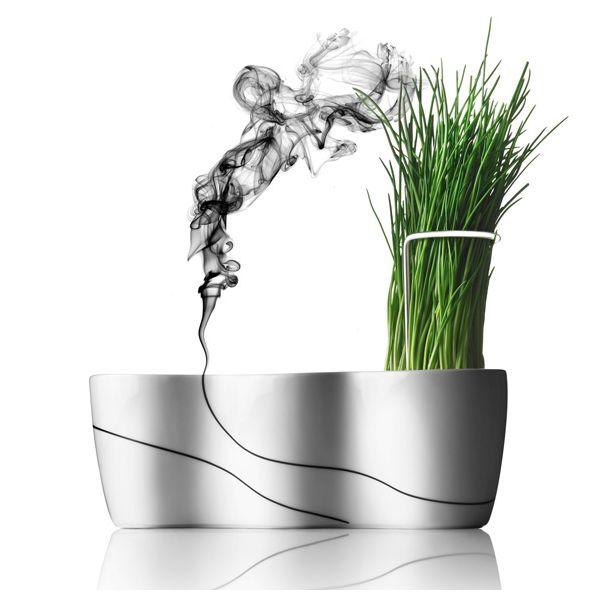 Trio herbes